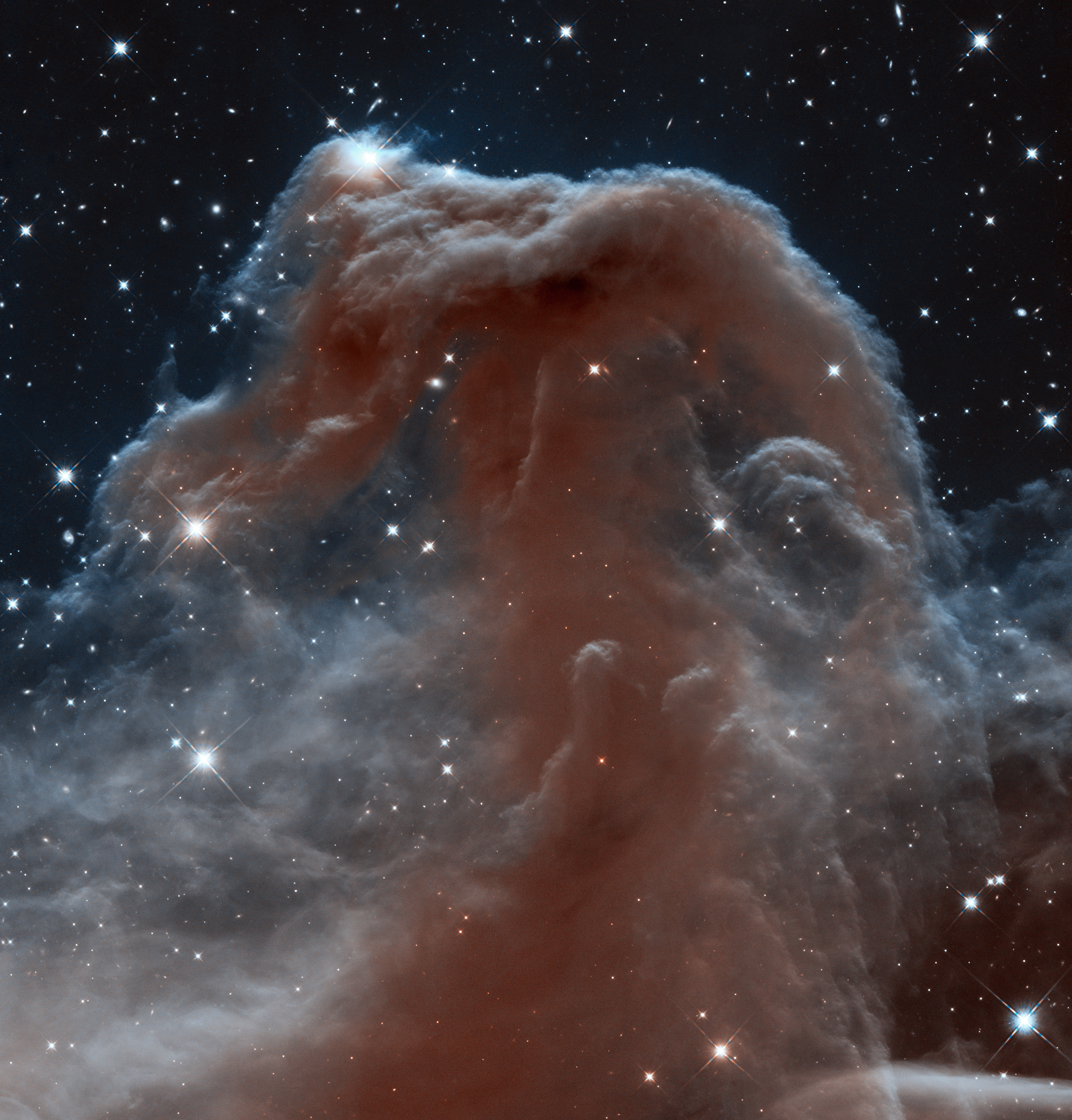 What Gives Galaxies Their Distinctive Shape Hubble Sees A Horsehead Of A Different Color