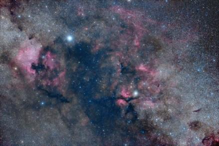 2016-07-19_578e996bc65fd_cygnus-v2-small